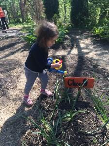 Field Trip to Toronto Botanical Garden